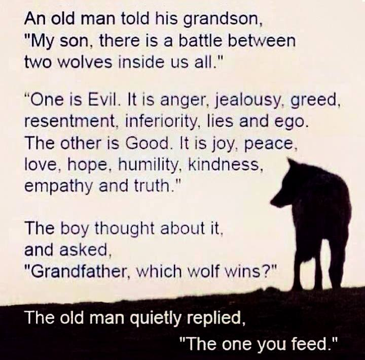 Image result for which wolf do you feed